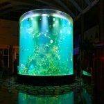 cina personalizzato a buon mercato grande grande rotondo acquari di vetro pmma cilindro trasparente serbatoi di pesce acrilico