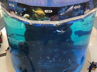 da 20mm a 500mm di spessore pannelli acrilici per pesci grandi moderni