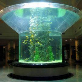 pmma acquario in vetro mezzo cilindro in plexiglass trasparente