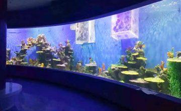 Acrilico Waterscape