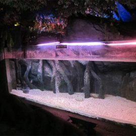 Pannello / finestra per piscina in acrilico per Underwater Sea World
