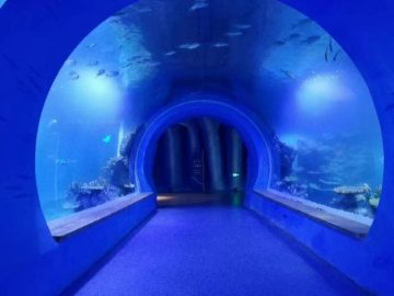 Acquario di tunnel acrilico trasparente di grandi dimensioni con forme diverse