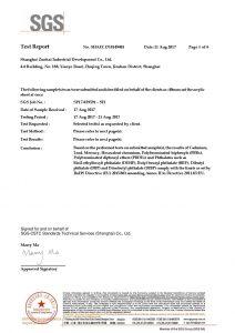 ROHS Test Certificate EN