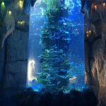 pannelli acrilici trasparenti per acquari grandi, vasche per pesci